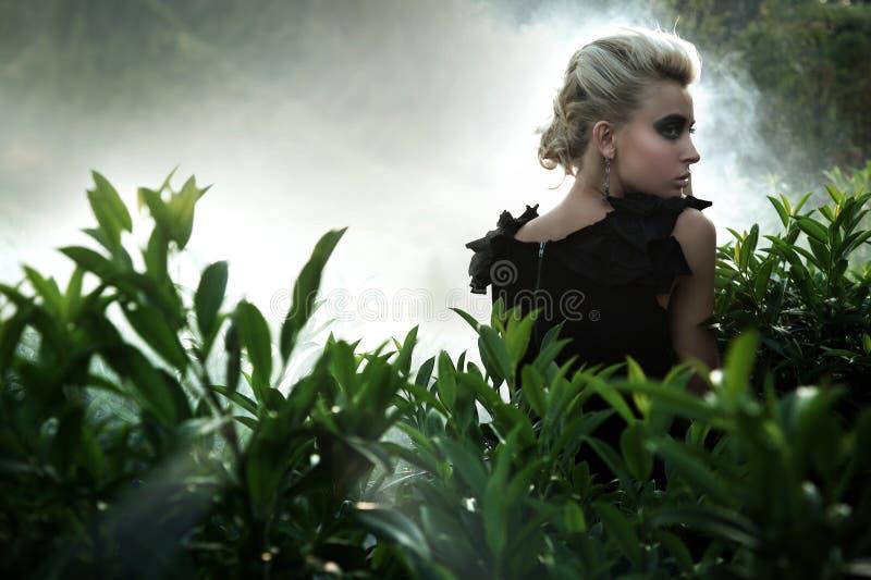 Blonde de moda fotos de archivo libres de regalías
