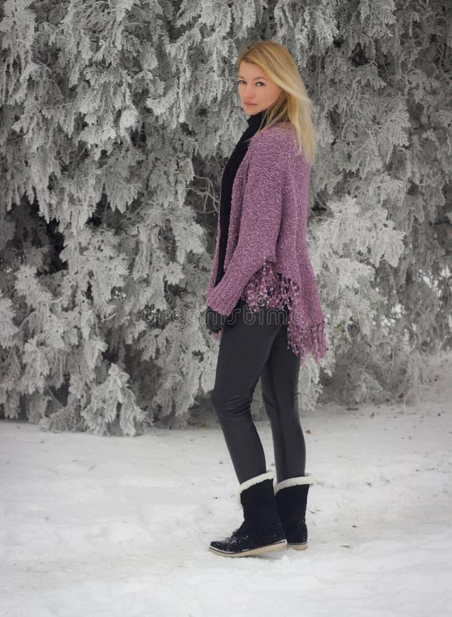Blonde en de winter stock fotografie