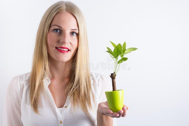 Blonde Frau, die einen kleinen grünen Baum anhält lizenzfreie stockfotos