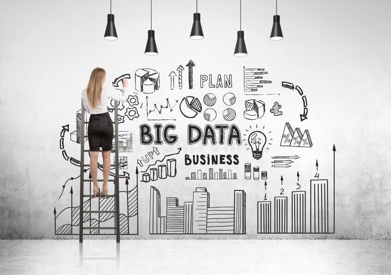 Blonde Geschäftsfrau auf Leiter, große Daten lizenzfreie stockfotos