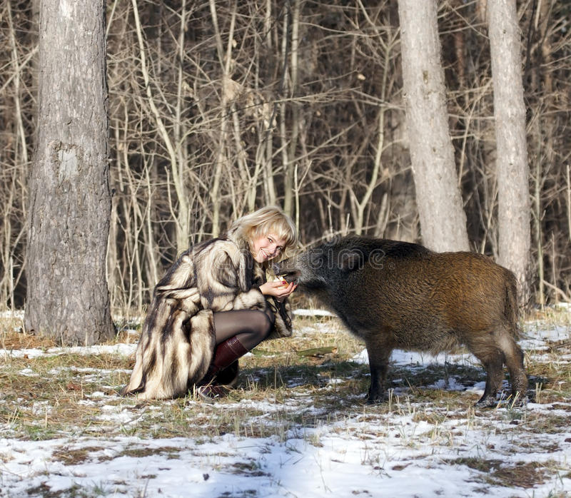 Download Blonde girl with wild boar stock image. Image of animals - 9702637