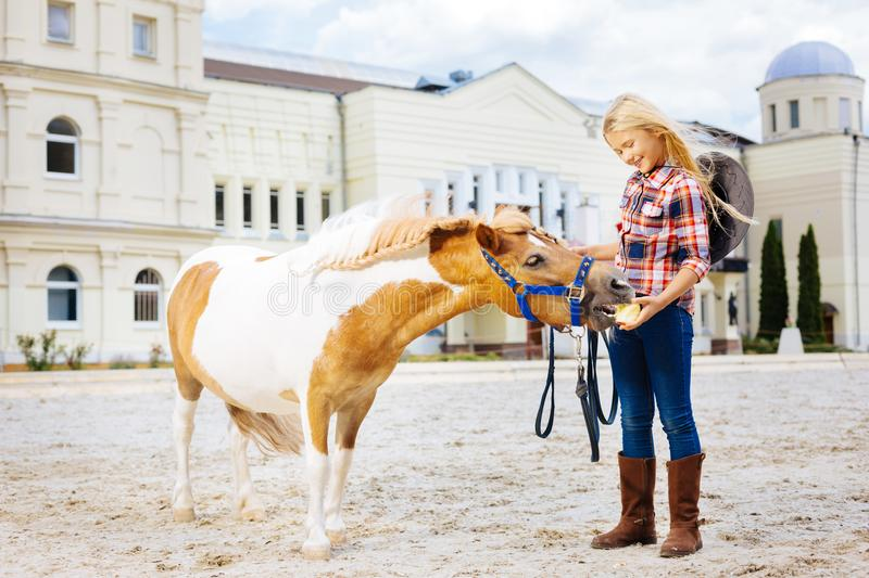 Blonde-haired smiling cowboy girl feeding her little pony royalty free stock photo