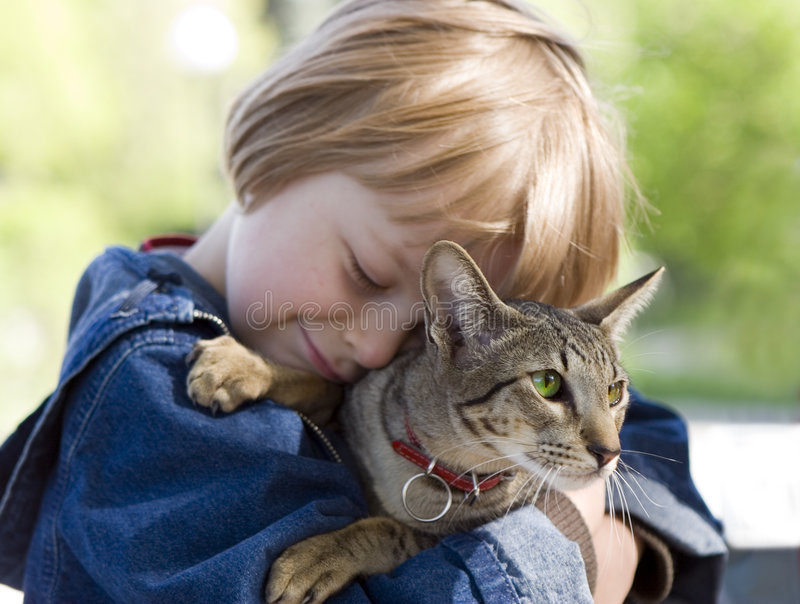 Blonde jongen met oosterse gekweekte kat stock foto