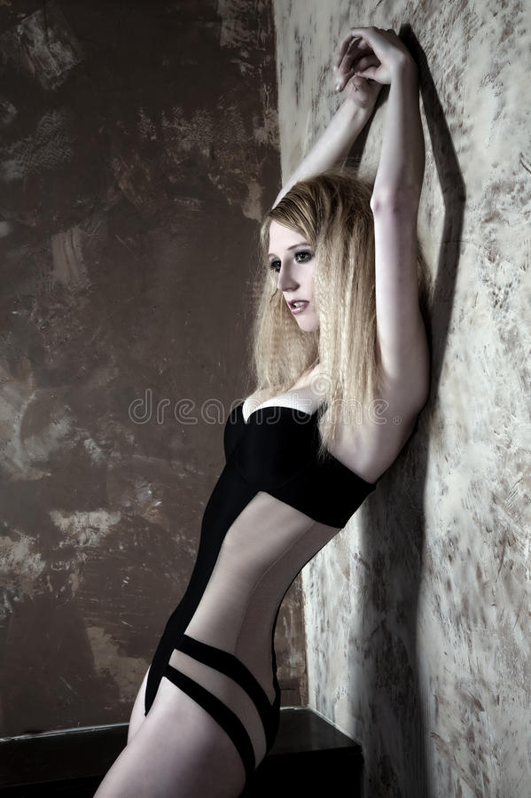 Download Blonde in lingerie stock image. Image of sexual, hair - 22760497