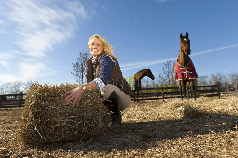 Blonde Model With Horses stock images