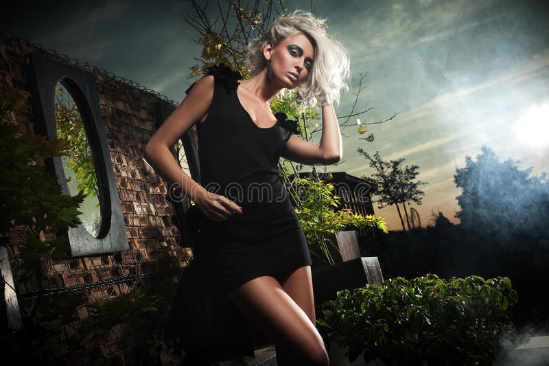 Download Blonde Posing Over Evening Sky Stock Photo - Image: 14836202
