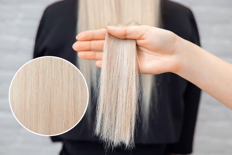 Blonde Rückseiten des gesunden Haarmädchens, weißer Hintergrund Konzeptbehandlungssorgfalt lizenzfreie stockbilder