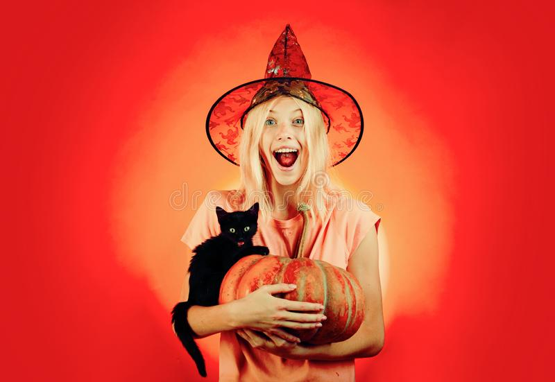 Blonde Witch with Pumpkin and black cat. Halloween concept. Ready for text slogan or product. Halloween wide poster for. Happy halloween celebrate stock photography
