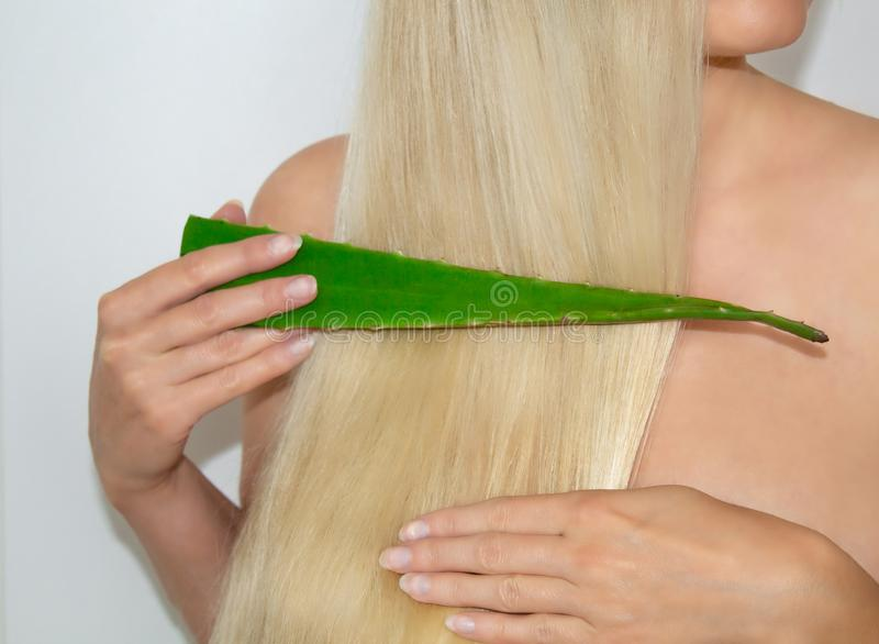 A blonde woman applied aloe vera to her hair. Natural Cosmetics for hair. Hair cosmetics stock photos