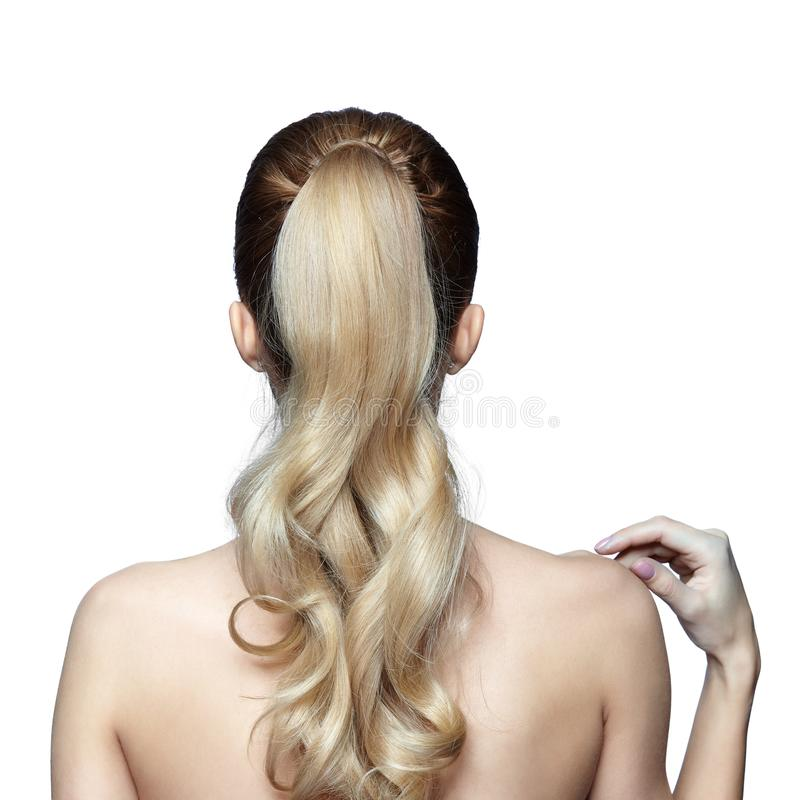Blonde woman from back side with long hair in ponytail stock photos