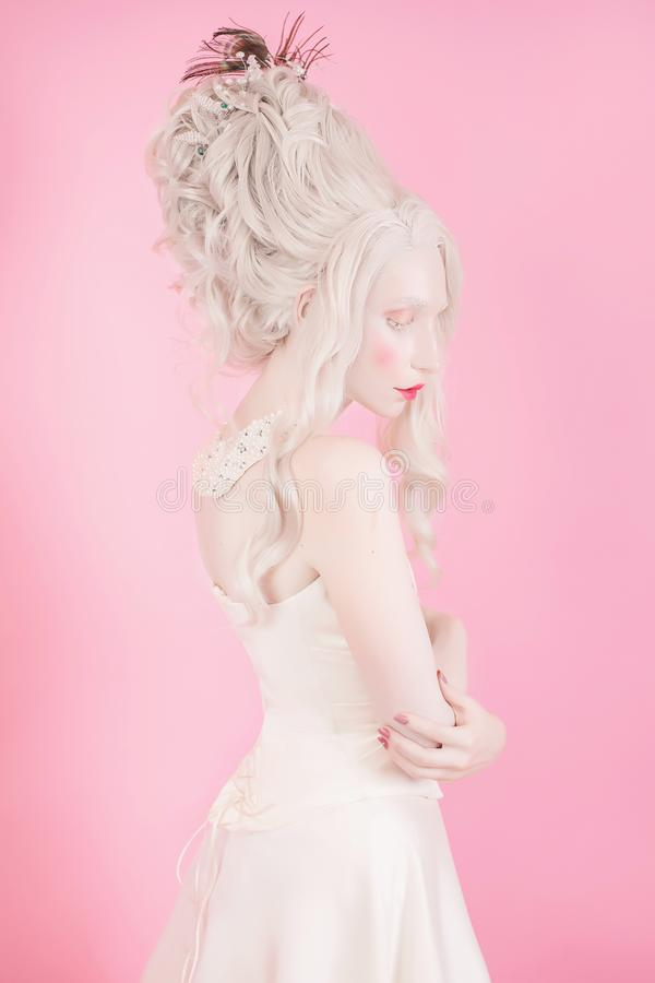 Download Blonde Woman With Beautiful Luxurious Rococo Hair Style Stock Photo - Image: 104912488