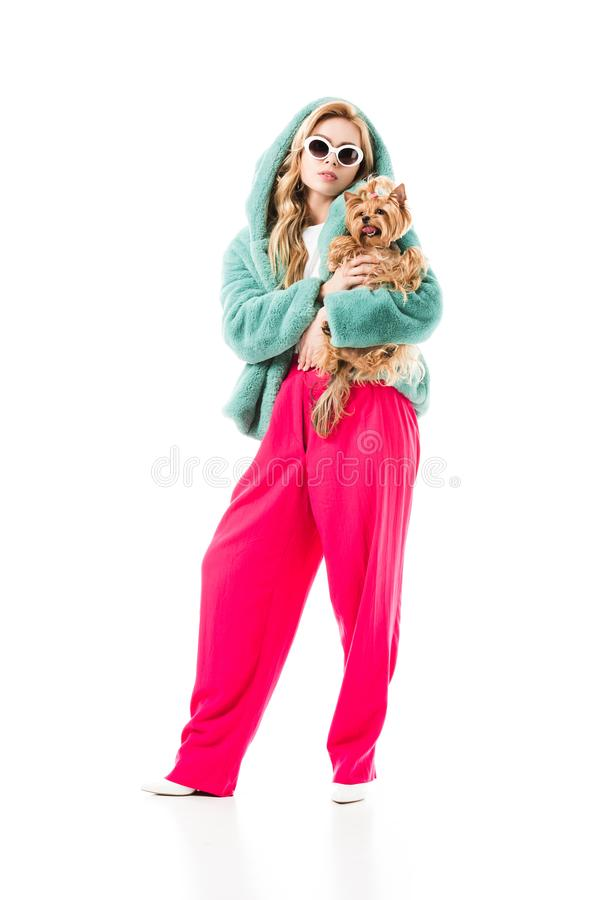 Blonde woman in fur coat holding cute Yorkie stock photography