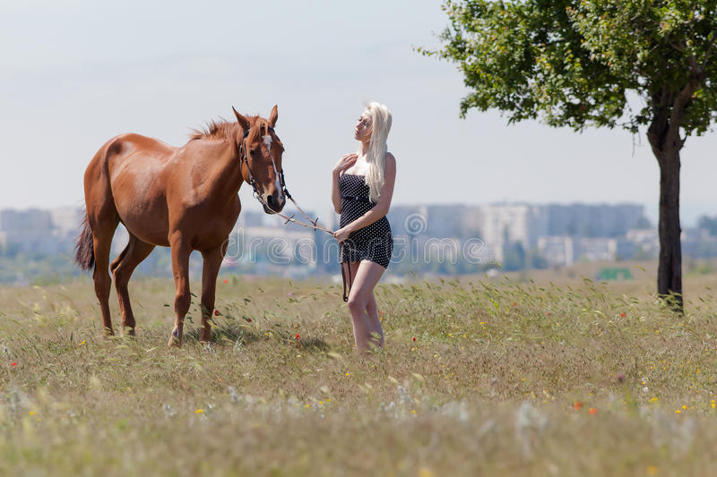 Blonde woman with gelding. Young blonde woman in polka-dot dress holding the reins of brown horse stock photos