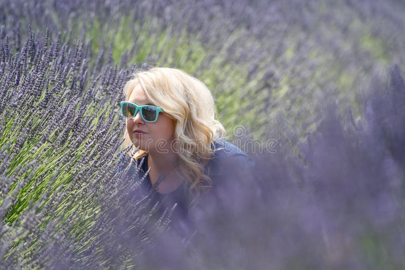 Blonde woman wearing sunglasses sniffs and smells lavender while in the field stock images