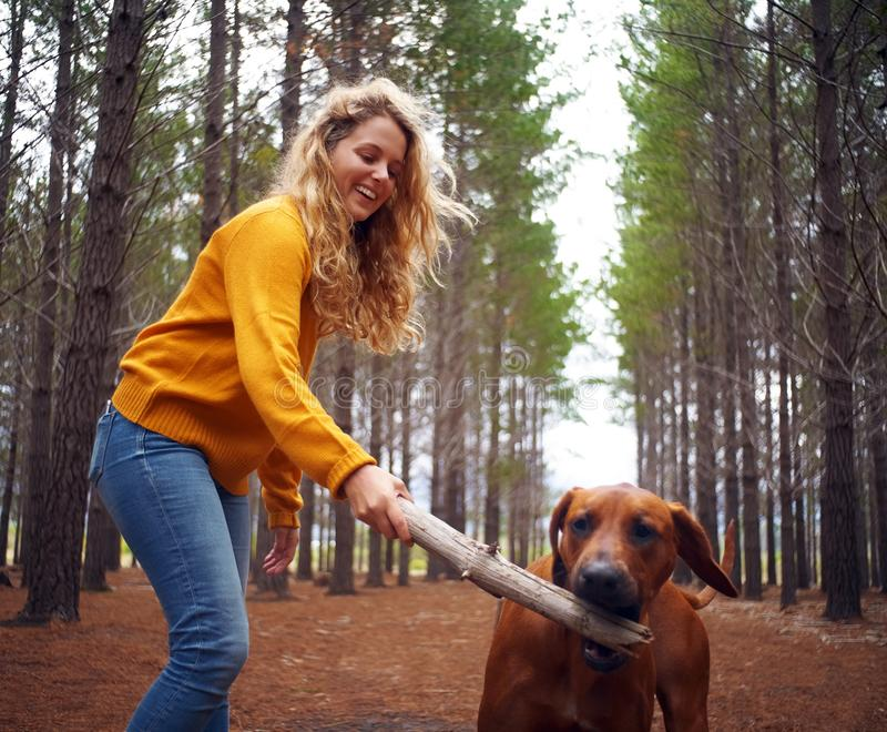 Blonde young woman and her dog playing with stick stock photos