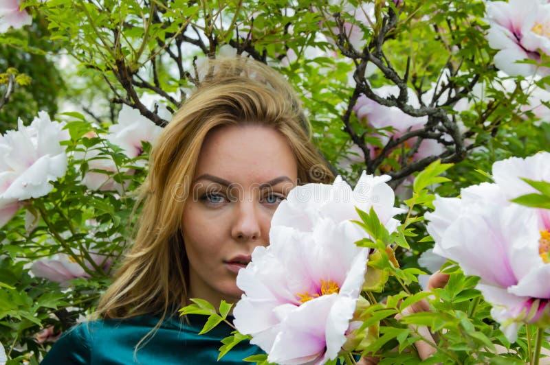 Blondemeisje op een achtergrond van bloemen van de boompioen stock foto