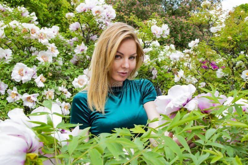 Blondemeisje op een achtergrond van bloemen van de boompioen royalty-vrije stock afbeeldingen
