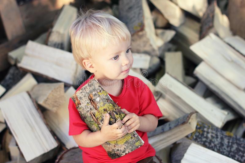 Blonder Junge des netten Kleinkindes mit Espe den Stapel des Brennholzhintergrundes anmelden Landlebensstil lizenzfreie stockfotografie