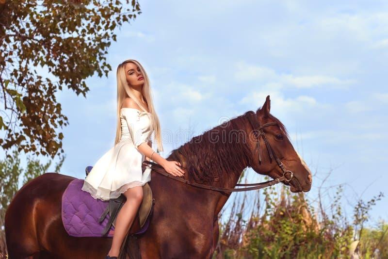 Blondes kaukasisches Mädchen, das ein Pferd an einem warmen und sonnigen Sommertag reitet lizenzfreie stockfotografie