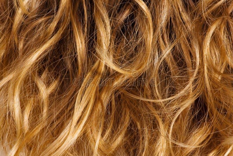 Blondes lockiges Haar - Hintergrund lizenzfreie stockbilder