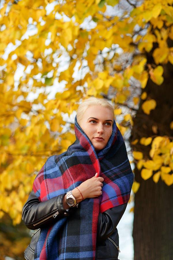 Blondevrouw in warme plaidsjaal wordt verpakt in de herfstpark dat stock afbeeldingen