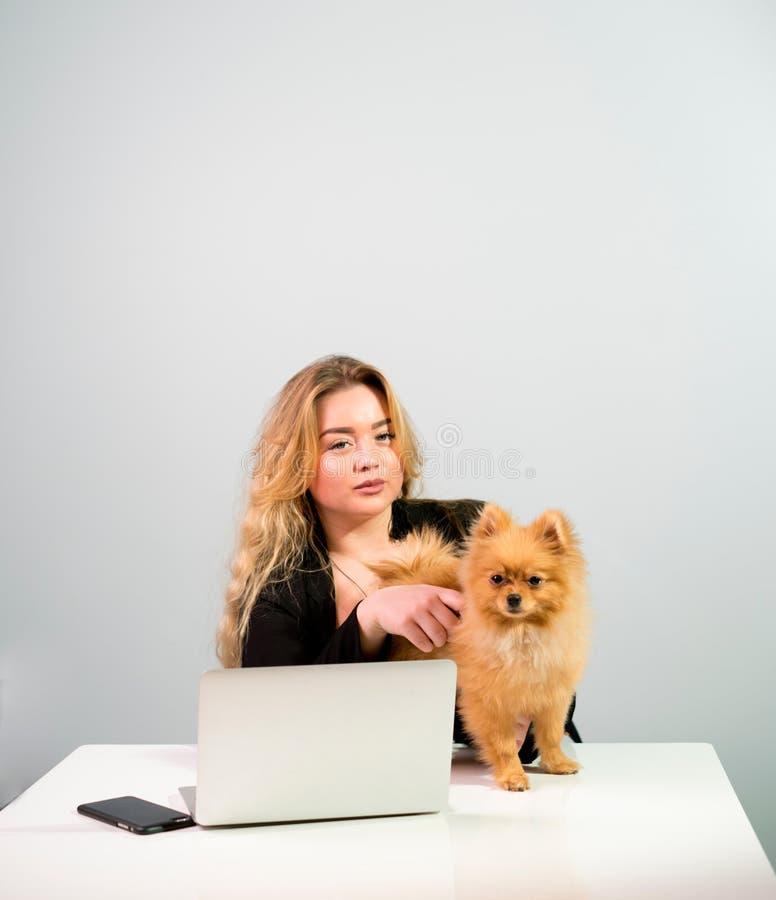 Blondine mit einem Laptop und einem Hund stockfotografie