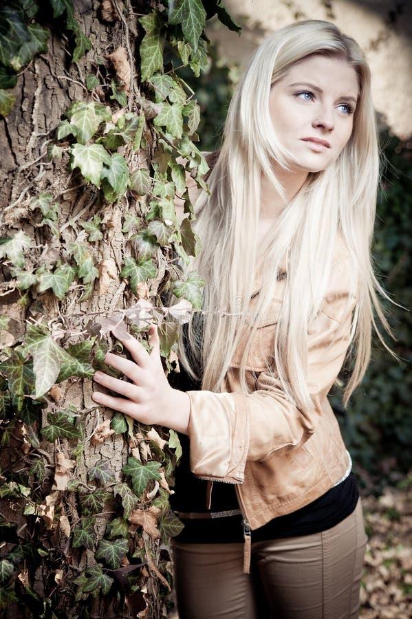 blondynki drzewo obrazy stock