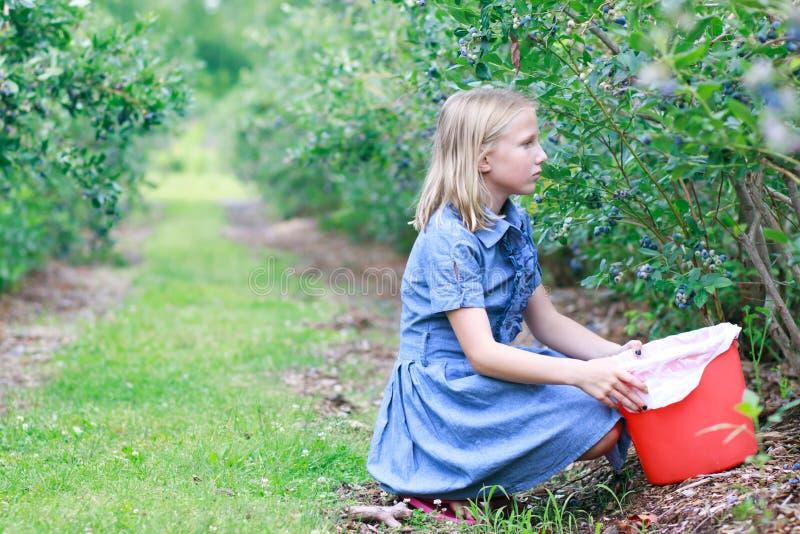 Blondynki Dziewczyny Zrywania Czarne jagody obraz royalty free