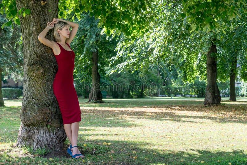 Blondynki kobieta ściska drzewa w parku Młoda dziewczyna w czerwony smokingowy odpoczywać w naturze, opierającej przeciw drzewu zdjęcia royalty free