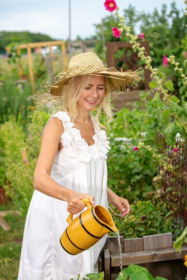 Blondynki kobieta w biel sukni podlewaniu kwitnie w ogródzie fotografia stock