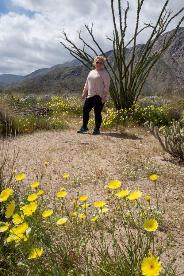 Blondynki kobiety stojaki pozuje obok Ocotillo kaktusowej rośliny w Anza Borrego Dezerterują stanu parka w Kalifornia fotografia stock