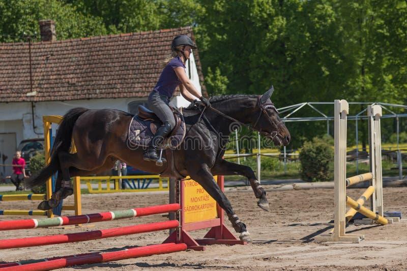 Blondynki młody horsewoman skacze zdjęcia stock
