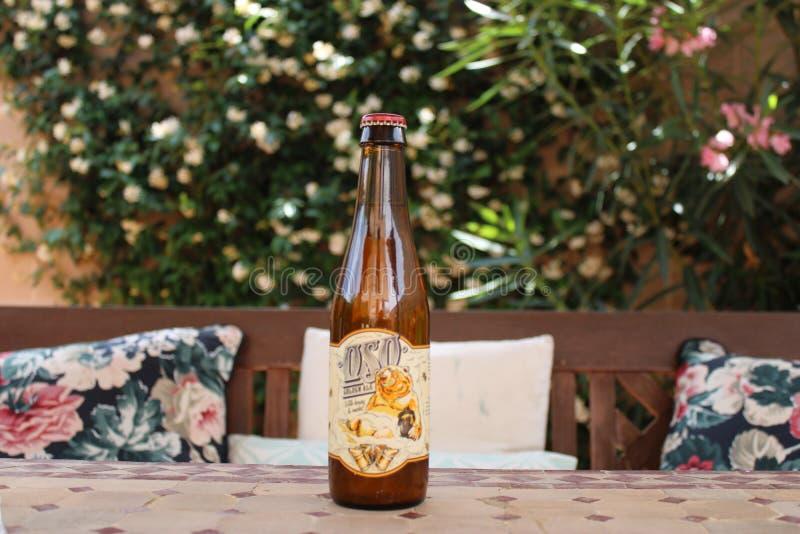 Blondynki piwo otaczający florą fotografia stock