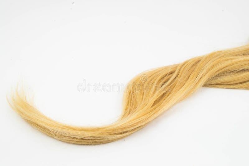 Blondynu kawałek zdjęcie royalty free