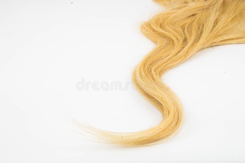 Blondynu kawałek zdjęcia stock