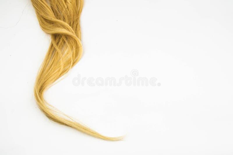 Blondynu kawałek zdjęcia royalty free
