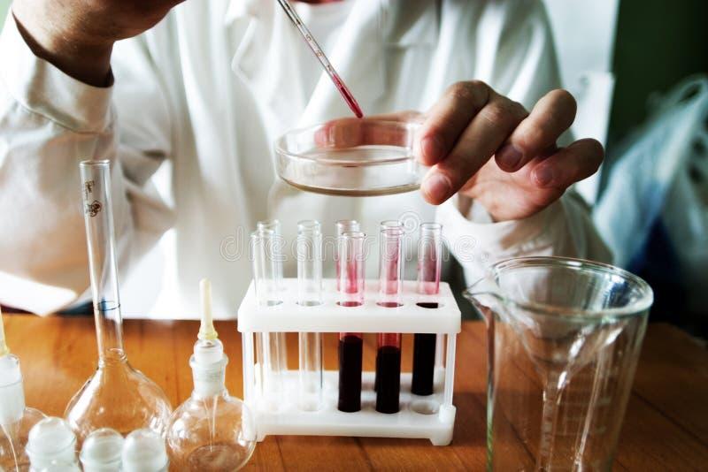 Blood analysis royalty free stock images