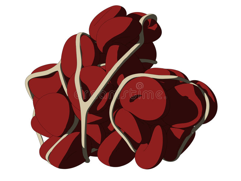 Blood clot. Vector illustration of a blood clot vector illustration