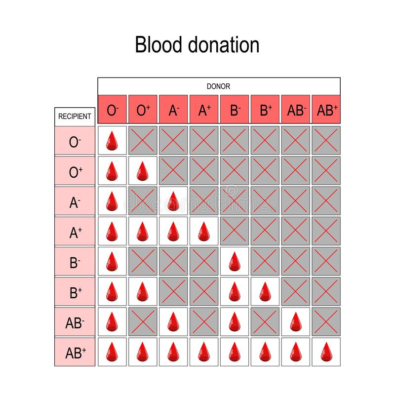 Blood Donation Chart. Recipient and Donor stock illustration