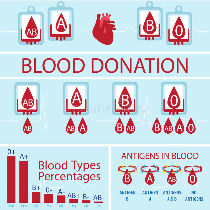 Blood donation infographic. Blood donation vector infographic. blood types match, percentage of types in the world and antigens royalty free illustration