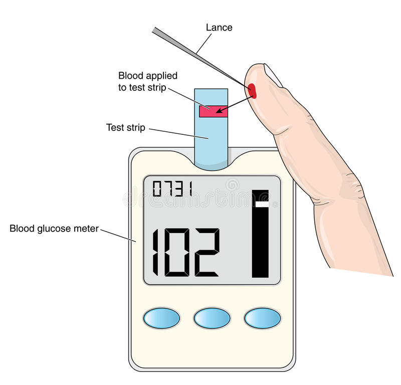 Meter Reading Practice Test : Blood glucose meter stock vector image