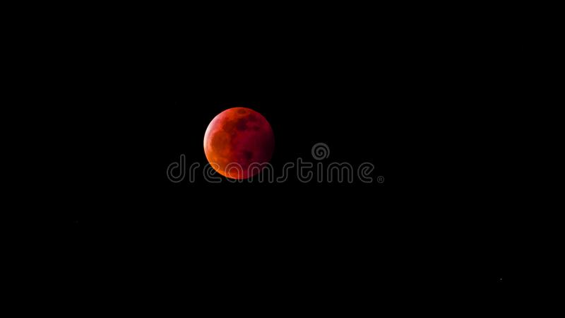 Blood Moon. 2019 royalty free stock photography