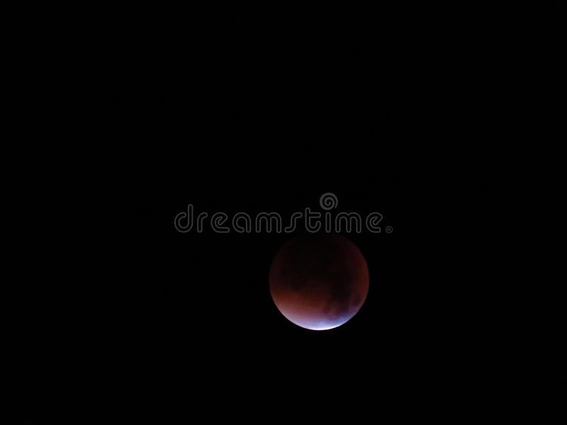 Blood Moon. The blood moon from 2015 royalty free stock photos