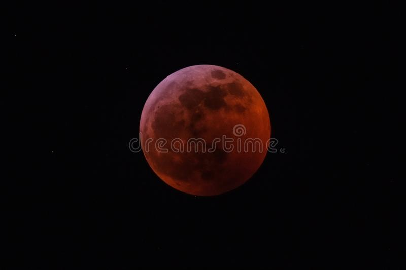 Blood moon. Beautifull cute moment stock photo