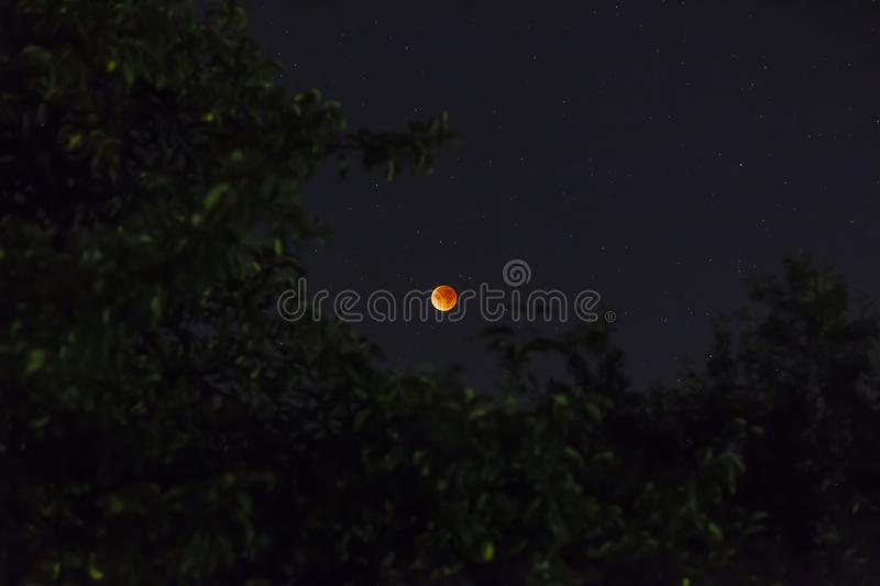 Blood moon at lunar eclipse stock photos