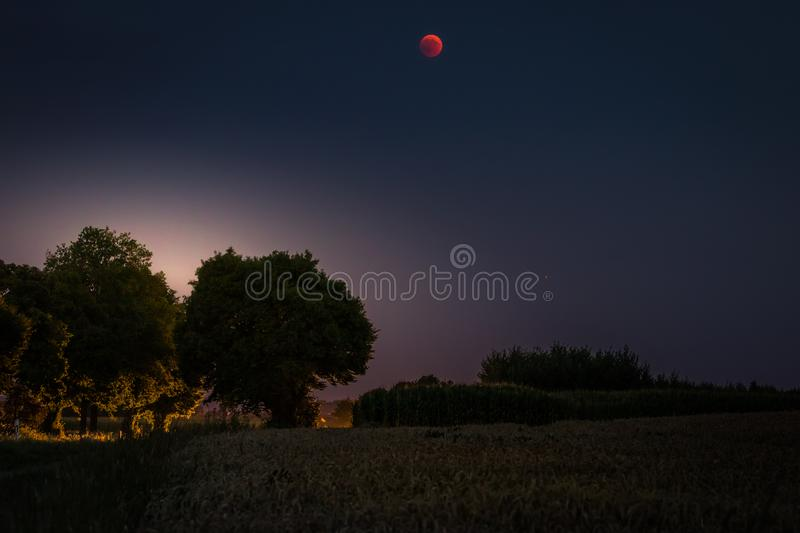Blood Moon 2018 - The total lunar eclipse and the planet Mars on July 27, 2018. Night landscape with trees and backlight. Blood Moon 2018: The total lunar stock image