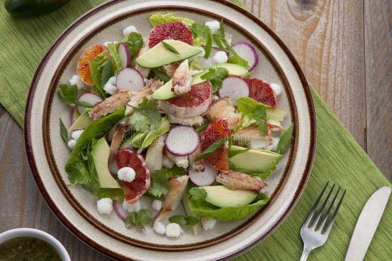 Blood Orange Crab Posole Salad royalty-vrije stock afbeelding