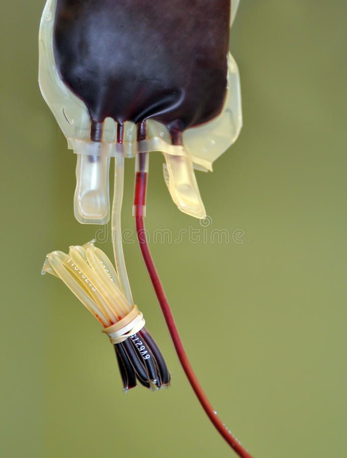 Blood Product stock photography