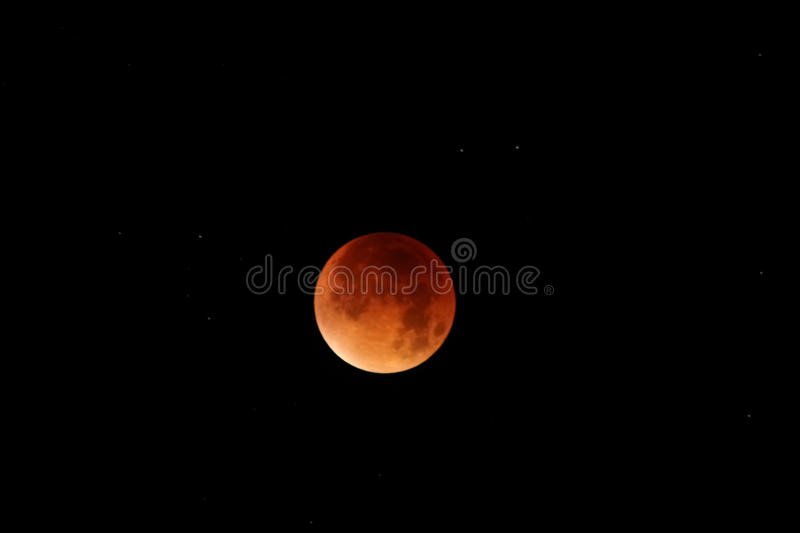 Download Blood  Red Moon - Total Lunar Eclipse Stock Image - Image: 83720723