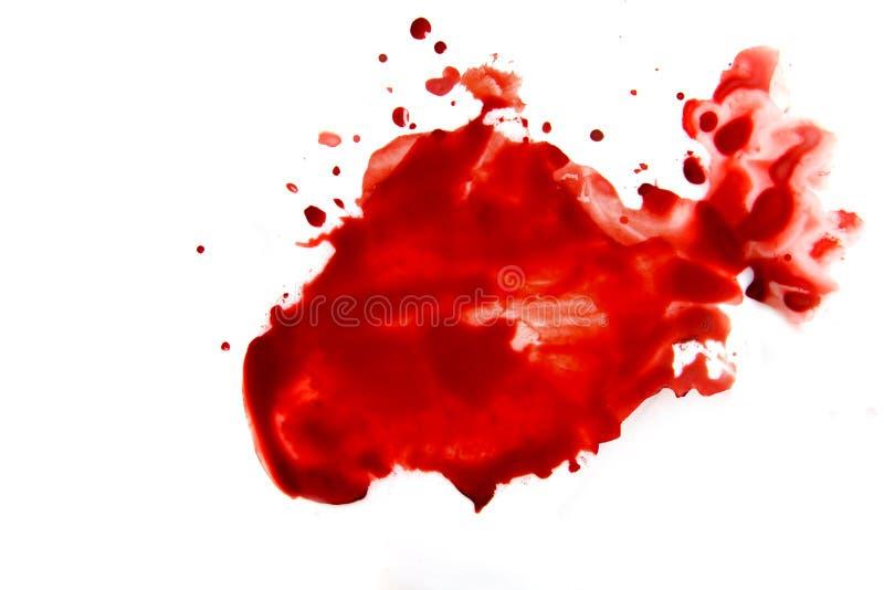 Blood smear splatter. Blood smear droplets (stains, splatter) islated on white background close up stock images